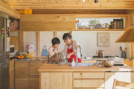 シンケンスタイルの家のアイランドキッチン