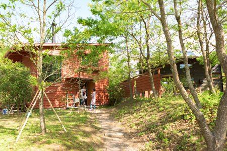 雑木林に暮らすような緑に囲まれたシンケンスタイルの木の家