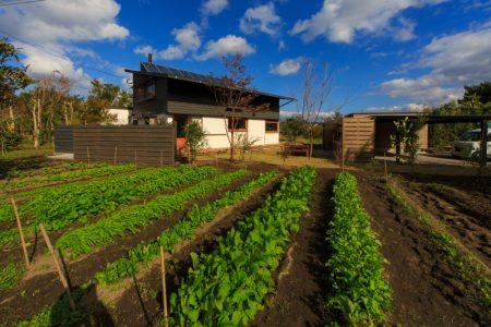 実家の敷地、畑の中に建てたシンケンスタイルの木の家